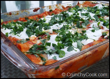Sour cream and cheese enchiladas